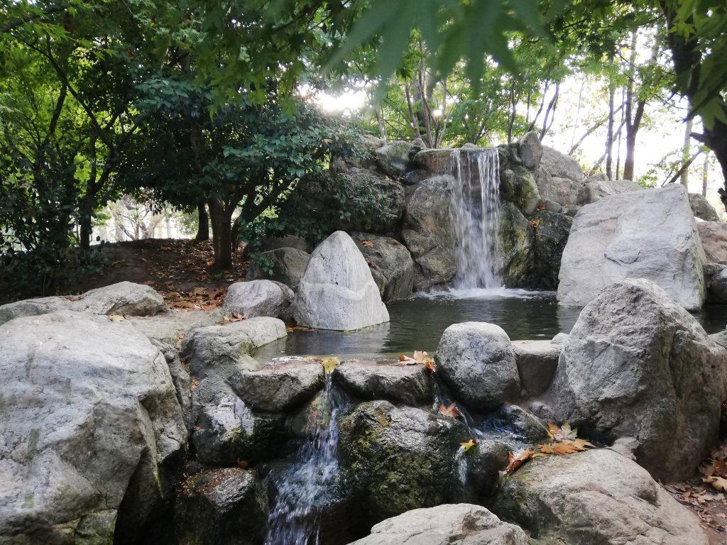 IMG 20181102 162842 1024x768 - Baltalimanı-Japon Bahçesi