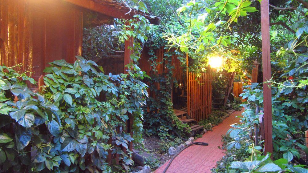 olympos antalya bungalov 1000x562 - Antalya- Olympos