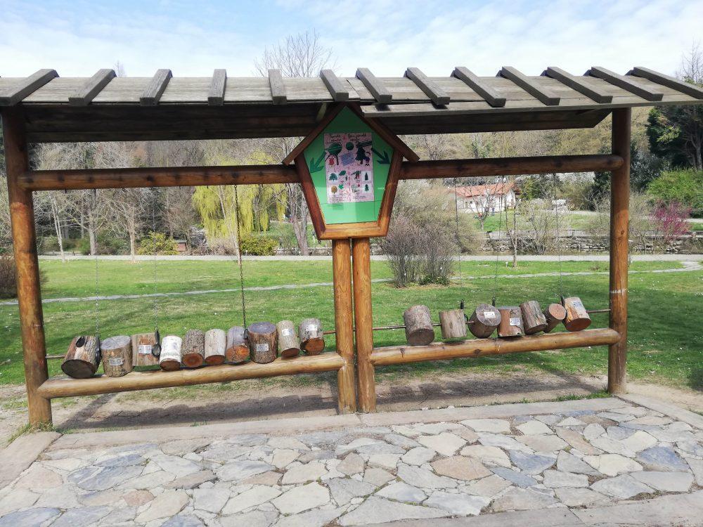 IMG 20190323 142521 1000x750 - Atatürk Arboretumu