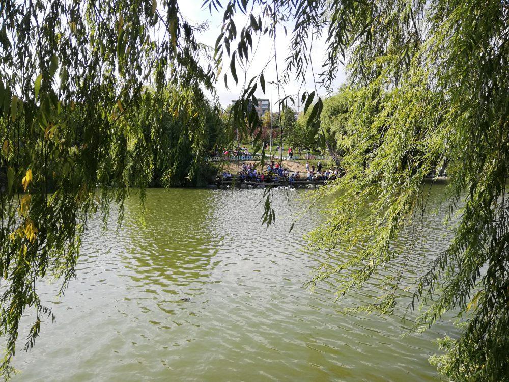 IMG 20190901 161713 1000x750 - Bakırköy Botanik Park